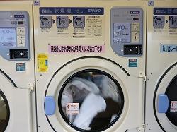 company event  クリーニング403 年末の大掃除に クリーニング403コインランドリーをご活用下さい! %tag