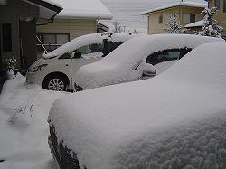 大雪の様子4.jpg
