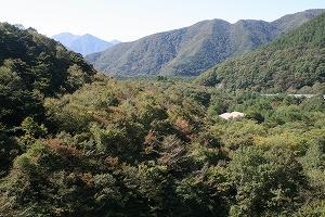 富士六湖3.jpg