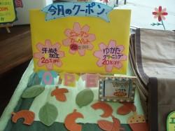 富士見町店ディスプレイ2.jpg