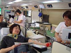 献血3.jpg