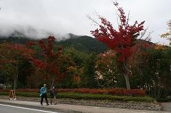 紅葉まつり5.jpg
