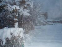 雪かき隊 風景