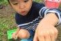 4歳児でも出来た!ザリガニの簡単な捕獲方法